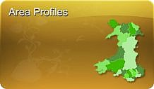 View information on areas of Gwynedd