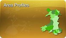 Areas of Gwynedd